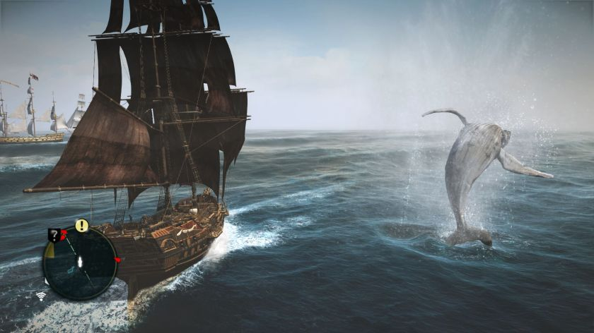 AC 4 Black Flag whale